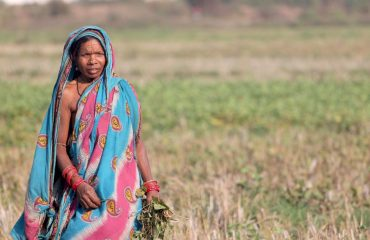 Indisk Kvinde - Illustrationsfoto